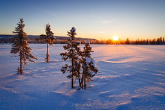 winter landscape, -28*С (czdistagon.com) Tags: frost season snow winter sun nature outdoor landscape sky tree forest cold beautiful white ice mountain wood background environment fir sunlight sunshine year weather new alp snowy hoarfrost travel frozen snowfall summit rime vacation cover highlands blue cloud hoar hill morning light fairytale panorama scenic view idyllic distagont2821 czdistagoncom distagon matveevaleksandr czdistagon aleksandrmatveev