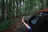 Capture! (eggysayoga) Tags: fujifilm fuji xt1 samyang 12mm rokinon bower ncs cs f20 f2 wide ultra angle lens iphone car photo bts behindthescene forest tree jungle road trip taking bali bedugul indonesia botanical garden kebun raya