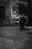 Promenade dominicale (Olivier DESMET) Tags: noirblanc street olivierdesmet nb blackandwhite bw monochrome streetphoto candid lesgens photosderue ricoh ricohgr gr 28mm
