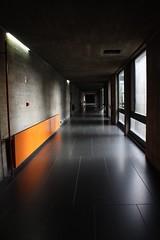 The Orange Heater (Joo Rodrigues (jay.row)) Tags: architecture fep arquitecture orange window hall run dark light lines geometry canon porto economics afraid practical minimalism