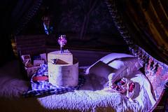 DSC_2285 (TDG-77) Tags: nikon d750 24120mm f4 chatsworth house gardens christmas theme nutcracker