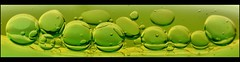 Our Daily Challenge: Abstracts In Oil (Sue90ca Falling Behind. More Off Than On Lately) Tags: canon 6d odc abstractsinoil green oil water