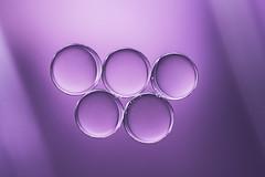 Purple Drops (PLF Photographie) Tags: macro goutte huile oil drop violet purple graphisme graphism