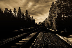 Across the tracks (Light canvas) Tags: train traintracks tracks sepia sepiatone mono monochrome blackandwhite landscape dark darkness