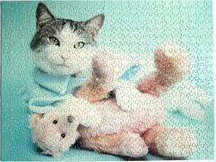 Guiness (Rachael Hale) (Leonisha) Tags: puzzle jigsawpuzzle cat chat katze teddybear teddy teddybr