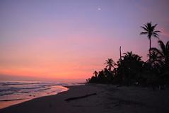 San Bernardo del Viento 19 (Stephaninie_) Tags: sunset sea summer beach del atardecer mar sand san playa viento arena amanecer aurora bernardo palmera isla orilla marea brisa