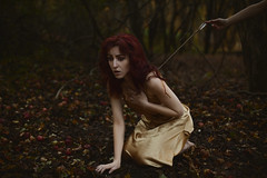 Insult to Injury  64/365 (aleah michele) Tags: autumn fall leaves fairytale forest gold golden pain woods magic injury orchard redhead story fawn fox apples arrow 365 redhair wound tale intothewoods golddress insult hunted struck 365project aleahmichele aleahmichelephotography addinsulttoinjury