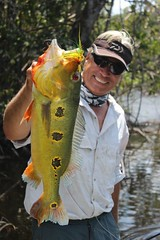 Amazonia 2012 (82)