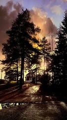Drama in the sky (elfinor) Tags: autumn trees sky sun sol colors sweden himmel ute sverige ferie hollyday hst solnedgang trr mobileshot vrmland farger sffle duse elfinor