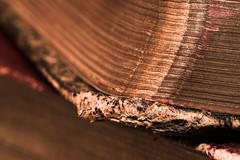 Poetical Works of Byron (Kate H2011) Tags: old uk red brown macro texture closeup gold book pages indoor books depthoffield worn byron hmm 2015 ef100mmf28macrousm macromondays katehighley weatheredorworn