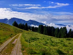 20150619_092807_HDR (giulianacasagranda) Tags: wood blue summer sky italy mountain green nature colors grass north trentino malga cambroncoi 1650m