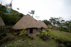 nurkowanie-travel-pl-115.jpg (www.nurkowanie.travel.pl) Tags: indonesia places papua baliem