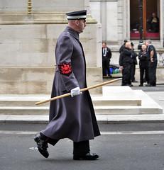 Img486468nx2 (veryamateurish) Tags: london westminster unitedkingdom military ceremony british cenotaph whitehall veterans armedforces remembrancesunday commemoration coldstreamguards londondistrict garrisonsergeantmajor andrewstokes andrewvernstokes