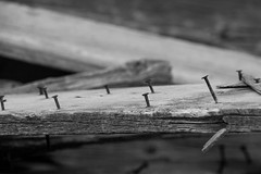 Barn board (begineerphotos) Tags: wood board nail nails barnboard