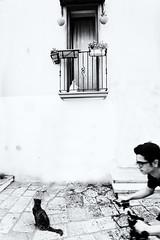 Il Vicolo (pinomangione) Tags: pinomangione street biancoenero monocromo mesagne vicolo allaperto