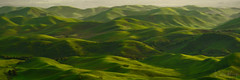 Emerald Hills (Willie Huang Photo) Tags: bayarea hills green rolling spring light shadow landscape nature scenic rollinghills california