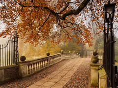 Claire College Bridge (davepickettphotographer) Tags: claire college cambridgeshire cambridgeuniversity autumn leaves fall davepickettphotographer uk autumnal foggy olympuscamera early morning