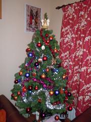 christmas 2011 017 (desmond nicholson2011) Tags: christmas2011