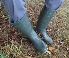 Wellies green (transwede) Tags: wellies gummistiefel rubber boots gummistvel rubberlaarzen
