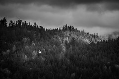 Alone in the Wilderness (Isaac Hilman (@lifeofisaac)) Tags: house mountain alone solitude silence surrounded fall trees forest wooded light morning gibsons bc canada britishcolumbia mountains nikon d800 70200mm