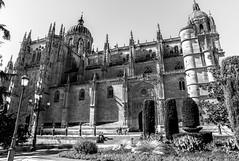 catedral salamanca b&w (phooneenix) Tags: catedral salamanca bw blancoynegro blackwhite