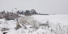Rozewerf (GdeB fotografeert) Tags: gdebfotografeert januari2013 rozewerf marken