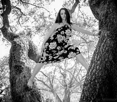 Fierce & Fearless (JDS Fine Art & Fashion Photography) Tags: fierce dearless treeclimbing woman model style attitude fearlesswoman