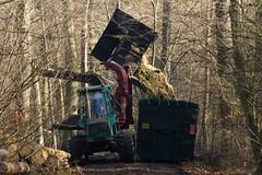ckuchem-7212 (christine_kuchem) Tags: wald abholzung baum baumstmme bume einschlag fichten holzeinschlag holzwirtschaft waldwirtschaft