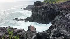Natural Wonders: Daepo Jusangjeolli Cliff (Mizzlynx) Tags: jeju jejudo jejuisland nature sea island lavabed jusangjeolli