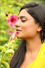 South Actress Deepika Das Hot in Yellow Sari Photos Set-2 (11)