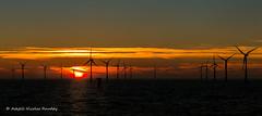 The day ends (Askjell's Photo) Tags: belgium blighbank maritime northsea offshore windturbine windmill windpower askjell