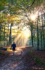 running in to the spotlight….. (www.petje-fotografie.nl) Tags: