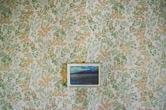 (yyellowbird) Tags: abandoned illinois wallpaper photograph vintage