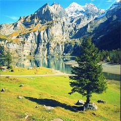 oeschinensee (thomasw.) Tags: oeschinen oeschinensee berneroberland schweiz switzerland suiza suisse europe europa travel mf mamiya 120 cross crossed analog