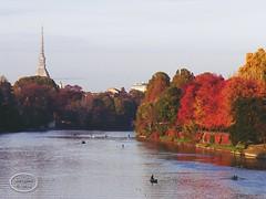 Turin - Italy. (☆ Susyfox ☆) Tags: po fiume città autunno torino mole panorama