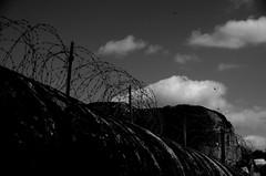 Bunkeranlagen Atlantikwall - fortifications (Knarfs1) Tags: dday invasion battery batterie normandie normande normandy atlantikwall liberation route