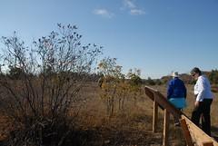 DSG_7393 Panorama 6 of 6 at Photo Post #2 (Greying_Geezer) Tags: 2016 hazelbird ncc natureconservancyofcanada hamiltontownship ort hiking naturereserves hazelbirdnr2