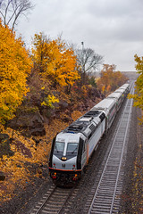 Leaf Season (sullivan1985) Tags: nj newjersey njt njtransit njtr njtr4011 1213 kingsland lyndhurst kingslandtunnel alstom bombardier multilevels flatspots fall autumn wet rainy cloudy november westbound passenger passengertrain train railroad railway commuter commutertrain meadowlands orange yellow leaves