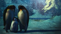 Weather Any Storm... (Kacey Macbeths) Tags: nouvellesaventures penguin winter snow family love