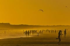 Time Spectra (En El Cielo y en La Tierra) (Ignacio M. Jimnez) Tags: timespectra playa beach seascape paisaje sunset atardecer arena sand gaviota seagull cometa mar sea puntaumbria huelva andalucia andalusia espaa spain ignaciomjimnez