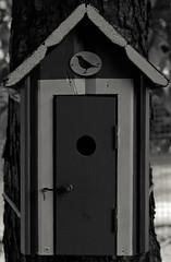 Home (Jori Samonen) Tags: birdhouse tree door talvipuutarha winter garden helsinki finland sony ilce3000 e 1855mm f3556 oss