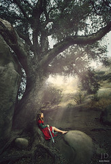 The Wait ({jessica drossin}) Tags: road light red portrait woman tree leaves fairytale forest photography rocks alone dress medieval story boulders sword lonely rays overlays jessicadrossin wwwjessicadrossincom jdbeautifulworldcollection