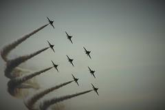 Red Arrows  d (David Gibson Photos) Tags: b red catalina team force display hawk air royal sally b17 chipmunk arrows vulcan 169 typhoon raf 170 avro aerobatic pby xh558 gpbya gdram eiabi gaedu gbyxz giitc zk349