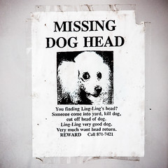Missing Dog Head (Thomas Hawk) Tags: usa dog america unitedstates unitedstatesofamerica idaho arco lingling techondeck techondeck2015 missingdoghead