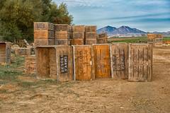 DSC_2043-964.jpg (RHMImages) Tags: landscape farms boxes diablo mtdiablo brentwood containers landcape uesugifarms marshcreekroad