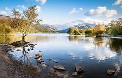 _TSC5309-Pano.jpg (deianowen) Tags: autumn lake wales landscape cymru snowdon llanberis snowdonia wyddfa eryri padarn llynpadarn
