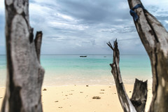 DSC_0091 (Mishra Rohan) Tags: red havelock andaman 1855mmf3556gvr d3300