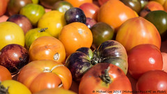 Heirloom Tomatoes (P9260811 (Michael.Lee.Pics.NYC) Tags: newyork farmersmarket bokeh olympus vegetable produce unionsquare mkii markii heirloomtomato em5 1240mmpro28