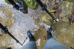 Prepared (schoeband) Tags: water schweiz switzerland stream suisse tripod svizzera linn aargau ch bzberg effingen sagemli