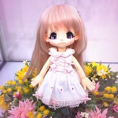 KIKIPOP display at Azone🎵 (cute-little-dolls) Tags: cute toy doll display special kawaii azone kikipop azonedoll originalkiki